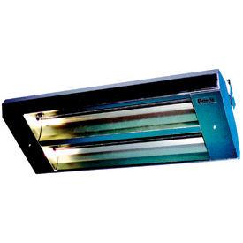 TPI 60° 2-Lamp Asymmetrical Infrared Heater 462A60THSS480V - 7300W 480V Silver