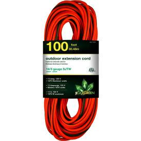 GoGreen Power, GG-13800, 100 Ft Extension Cord, 14/3, Orange/Green
