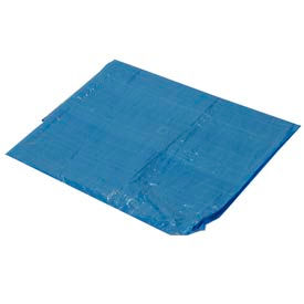10' x 12' Light Duty 2.9 oz. Tarp, Blue - B10x12