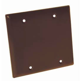 Hubbell 5175-2 Two Gang Weatherproof Device Mount Cover Blank Bronze - Pkg Qty 25
