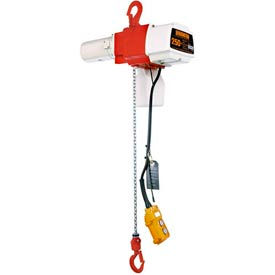 ED Dual Speed Electric Chain Hoist - 350 lbs, 10' Lift, 66/13 ft/min, 120V