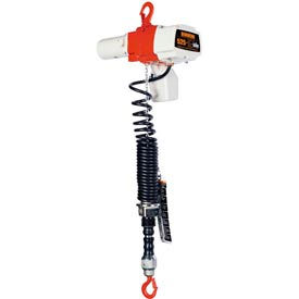 ED Cylinder Control Dual Speed Electric Hoist - 525 lbs, 6' Lift, 44/10 ft/min, 120V