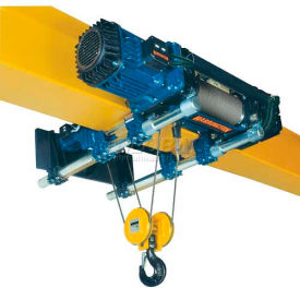 RH-Advantage Wire Rope Hoist, Dual Speed Hoist and Trolley, 10 Ton, 33' Lift, 230V by