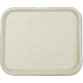 Disposable Serving Tray - 9w x 12d