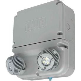 Hubbell 93063628 Dynamo Industrial LED Emergency Unit, NEMA 4X/IP66, 3W LED Lamps, Self-Diagnostics