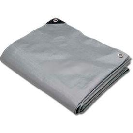 Hygrade Heavy Duty Super Cover Poly Tarp 10 Mil, Silver/Black, 50'L X 100'W - STH-50100