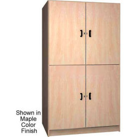 Ironwood 2 Compartment Wardrobe Storage Cabinet Solid Door, Cactus Star Color