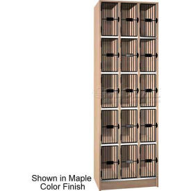 "Ironwood 15 Compartment Grey Grill Door 20"" D Locker, Cactus Star Color"