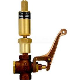 """Kahlenberg 115V Air/Steam Whistle, 1"""" Dia. w/valve"""