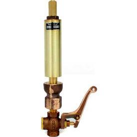 """Kahlenberg 116V Air/Steam Whistle, 1-1/2"""" Dia. w/valve"""