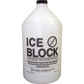 Ice Block - Pkg Qty 6
