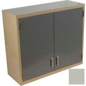 "Lab Wall Cabinet 35""W x 13""D x 30""H, 2 Steel Doors, 2 Adj Shelves, Champagne"
