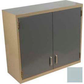 """Lab Wall Cabinet 35""""W x 13""""D x 30""""H, 2 Steel Doors, 2 Adj Shelves, Model Gray"""