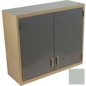 "Lab Wall Cabinet 35""W x 13""D x 30""H, 2 Steel Doors, 2 Adj Shelves, Stone Gray"