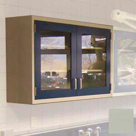 "Lab Wall Cabinet 35""W x 13""D x 30""H, 2 Glass Steel Encased Doors, 2 Adj Shelves, Champagne"