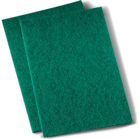 "Premiere Medium-Duty Scour Pad 6"" x 9"", Green 20/Case - PMP196"