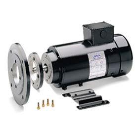 Leeson Motors Metric DC Motor-.37KW, 24V, 1800RPM, IP54, Special
