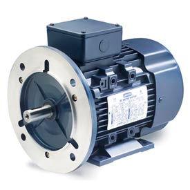Leeson Motors Motor IEC Metric Motor-.5HP, 230/460V, 3410/2790RPM, IP55, B3/B5, 1.15 SF, 74 Eff.