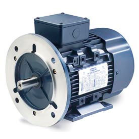 Leeson Motors Motor IEC Metric Motor-1.5HP, 230/460V, 1740/1450RPM, IP55, B3/B5, 1.15 SF, 85.5 Eff.