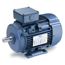Leeson IEC Metric Motor-1.0HP, 575V, 1725RPM, IP55, B3, 1.15 SF, 73 Eff.