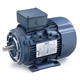 Leeson Motors Motor IEC Metric Motor-10HP, 230/460V, 3510/2905RPM, IP55, B3/B14, 1.15 SF, 89.5 Eff.