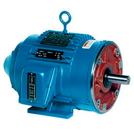 Leeson Motor - 25HP, 230/460V, 1800RPM, TEBC, Rigid Mount, 1.0 S.F.