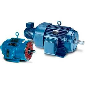 Leeson Motors 3-Phase Inverter Duty Motor 60HP,1180RPM,404TC,TEBC,230/460V,3PH,60HZ,Tstat,40C