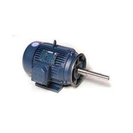 Leeson Motors 3-Phase Pump Motor 7.5HP, 3450RPM, N213JP, TEFC, 230/460V, 60HZ, 40C, 1.15SF, Rigid
