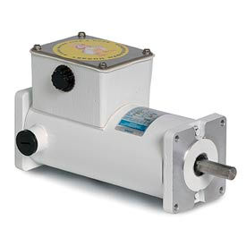 Leeson Motors Washdown DC Motor-1/6HP, 12V, 1800RPM, IP55, Sq. flange