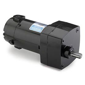 Leeson M1125033.00, 1/17 HP, 300 RPM, 180VDC, TENV, PZ, 6:1 Ratio, 10 In-Lbs
