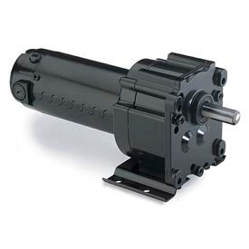 Leeson M1125070.00, 1/8 HP, 31 RPM, 90VDC, TENV, P300, 58:1 Ratio, 220 In-Lbs