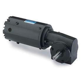 Leeson M1125081.00, 1/15 HP, 43 RPM, 115/230V, 1-Phase, TENV, 10, 40:1 Ratio, 34 In-Lbs