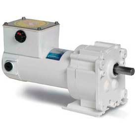 Leeson M1125261.00, 1/20 HP, 5 RPM, 90VDC, TENV, P300, 336:1 Ratio, 353 In-Lbs
