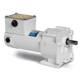 Leeson M1125266.00, 1/20 HP, 5 RPM, 12VDC, TENV, P300, 336:1 Ratio, 353 In-Lbs