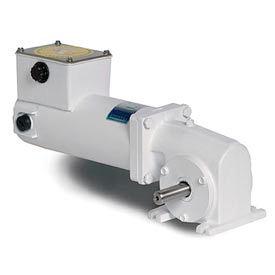 Leeson M1125277.00, 1/4 HP, 62 RPM, 90VDC, TENV, 13, 40:1 Ratio, 135 In-Lbs