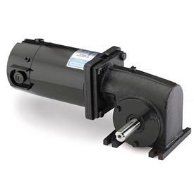 Leeson M1135039.00, 1/8 HP, 125 RPM, 90VDC, TENV, 13, 20:1 Ratio, 45 In-Lbs