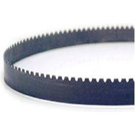 "M.K. Morse 7434000800BX1 - 6' 8"" x 1/2"" x .025 Gulleted Med/Coarse Carbide Grit Band Saw Blade"