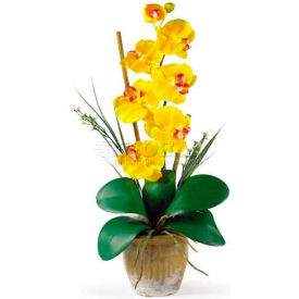 Nearly Natural Phalaenopsis Silk Orchid Flower Arrangement, Yellow