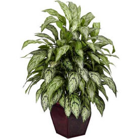 Nearly Natural Silver Queen with Decorative Planter Silk Plant