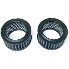 Newstripe Replacement Carbon Filters, 10001860, 2 Pack