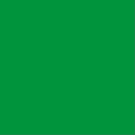 Flagging Tape - Green