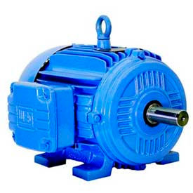 WEG General Purpose Motors, NEMA Premium Efficiency, 3 Phase, TEFC, Rigid Mount, 100 HP and Up