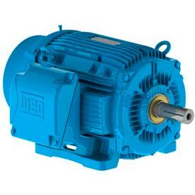 WEG Severe Duty, 3-Ph, IEEE 841 Petrochem Motors