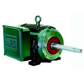 WEG Close-Coupled Pump Motors, Type JP, Under 10 HP