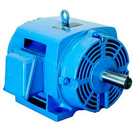 WEG Fire Pump Motors