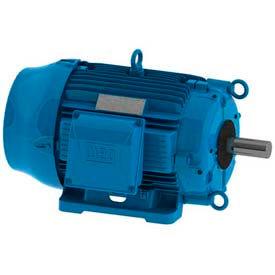 WEG W22 Cooling Tower Motors