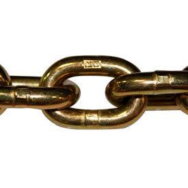 Advantage Sales Transport Chains