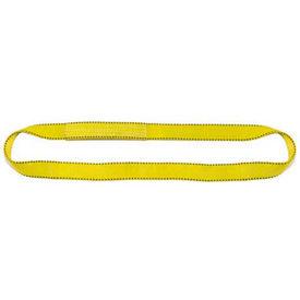 Liftex® Pro-Edge® Endless Polyester Flat Web Slings