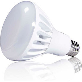 LED R30 & BR30 Lamps