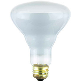 Halogen R & BR Lamps